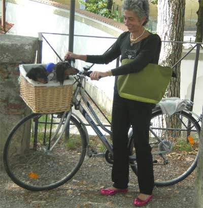 Woman with two cute dogs in her bicycle basket