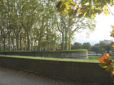 The ancient walls surrounding Lucca