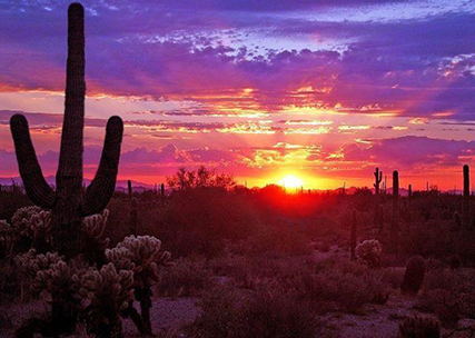 Tucson sunset - photo by Rob Ameln