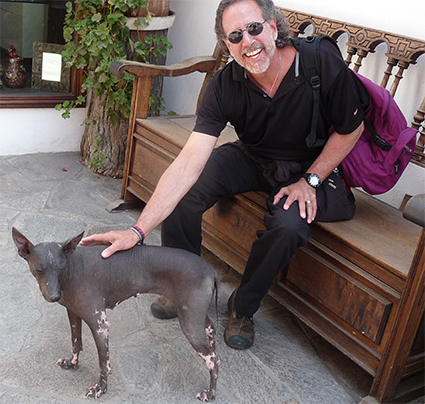 Peruvian hairless dog we met outside Museo Largo